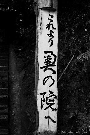 Kurama001