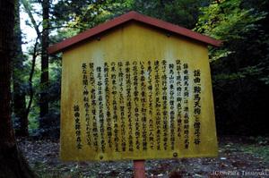 Kurama003
