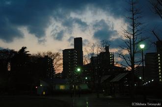 Haruiti002_2