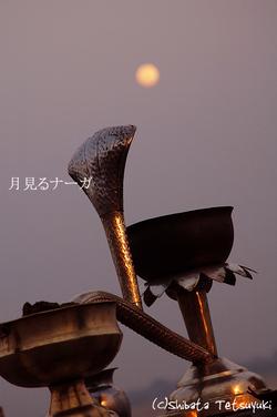 Nagamoon001