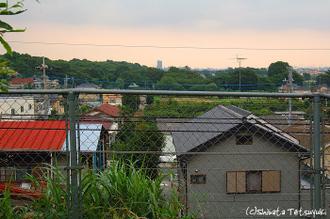 Higurasi002