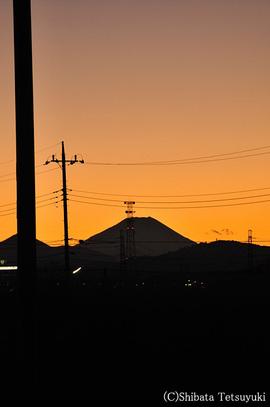 Tamagawa006